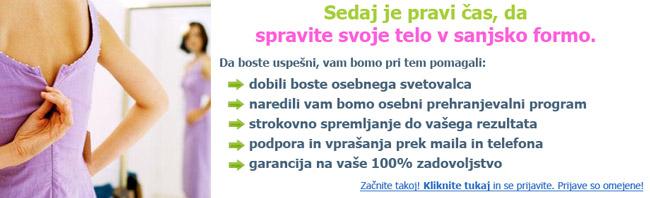 Novo-leto-2013-small
